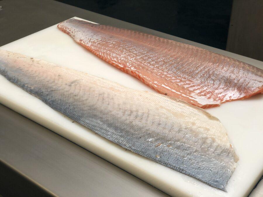 skinned salmon fillet & skin. Skinned with STEEN ST111 Manual tabletop skinning machine skinner