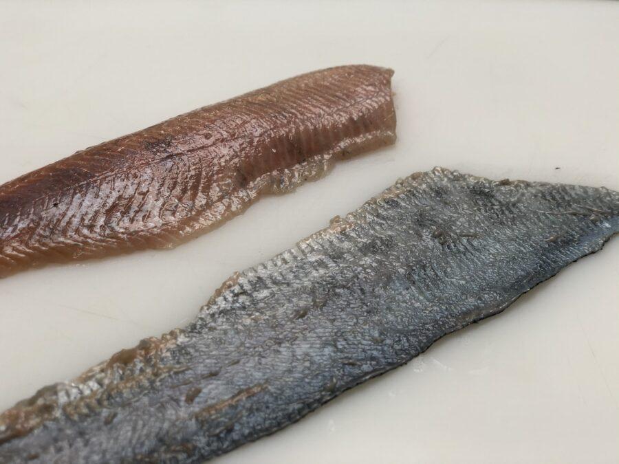 skinned trout fillet, Manual tabletop skinning machine ST111V