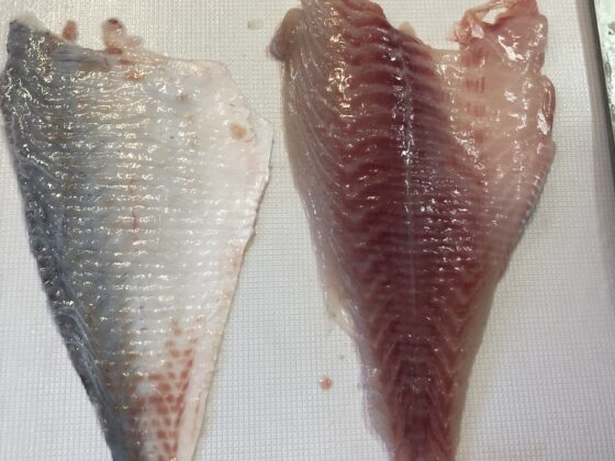 Automatic fish skinner - ST600V skinning machine - skinned tilapia