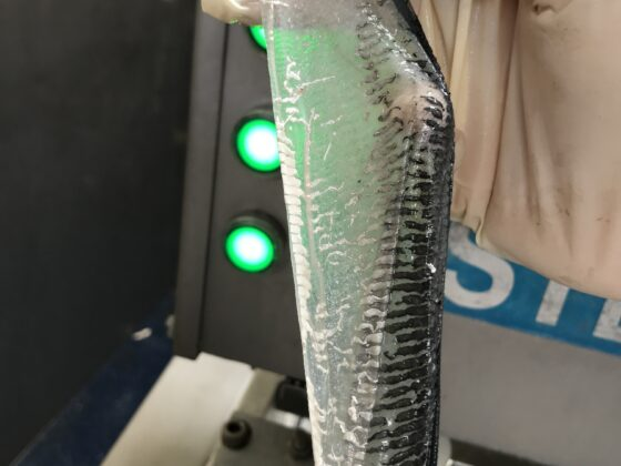 Automatic fish skinner - ST600V Mackerel skin
