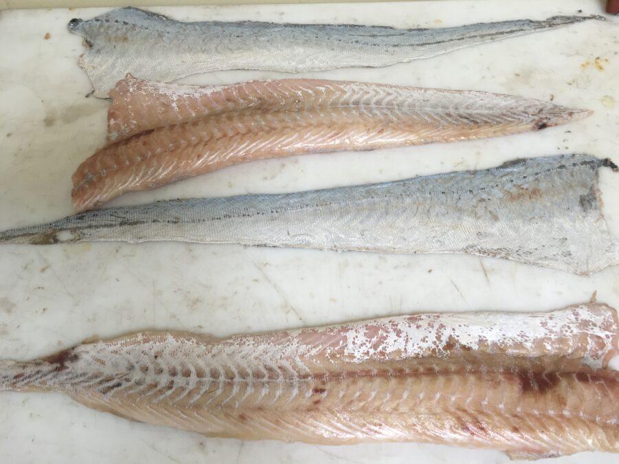 Skinned hake fillet - STEEN skin removal system